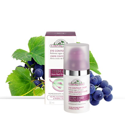 eye anti ageing cream